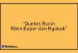 Quotes Bucin